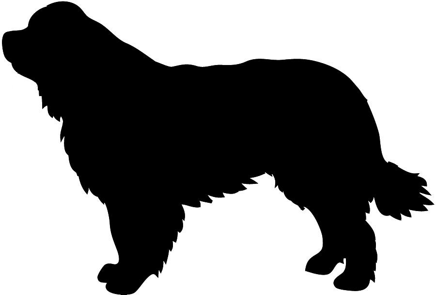 Newfoundlander silhouette dog