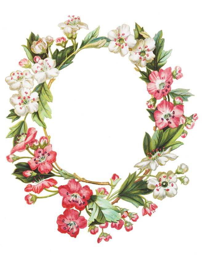 apple flower frame