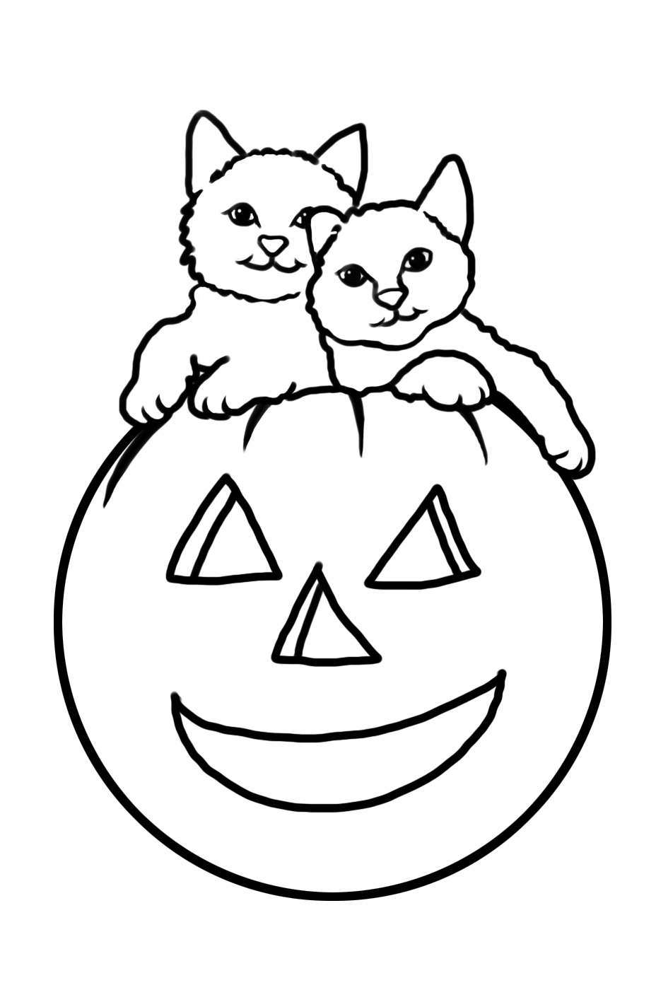 Halloween cats in pumpkin to color