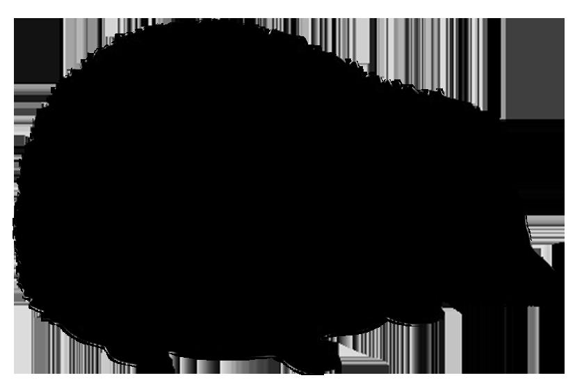 hedgehog silhouette