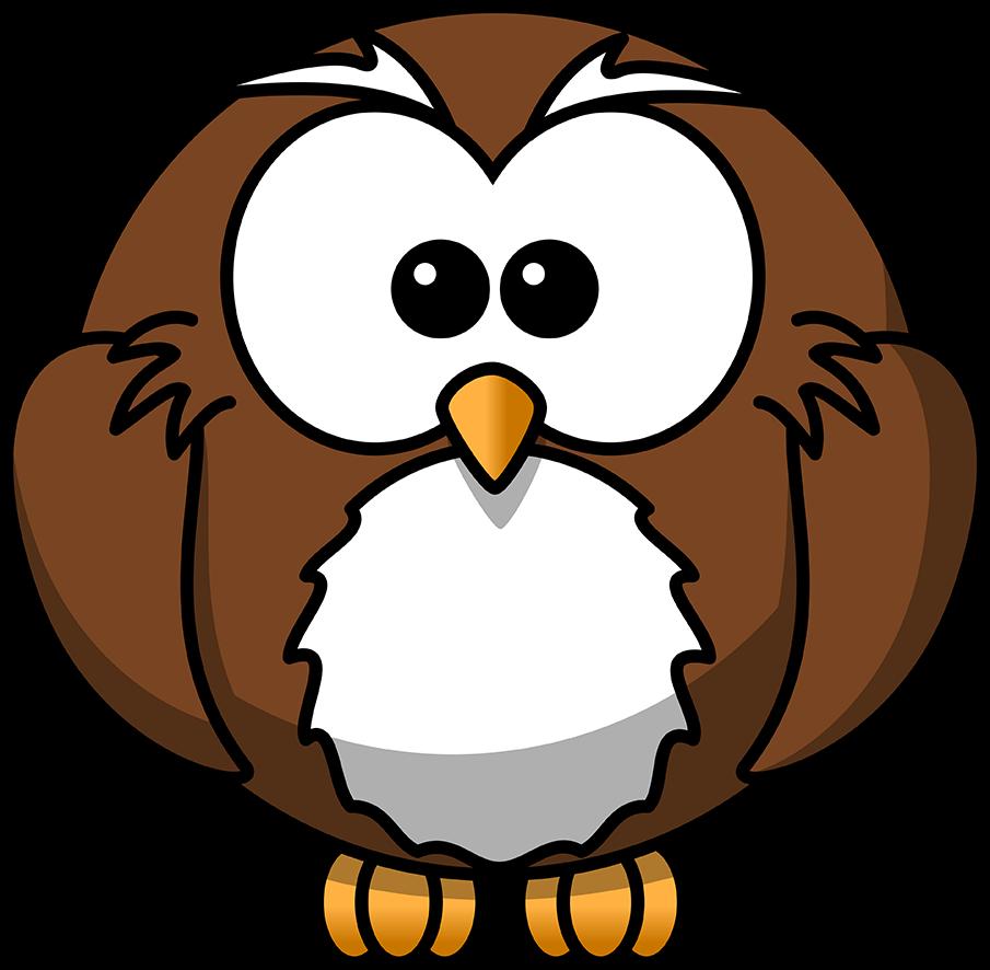 drawing round cartoon owl