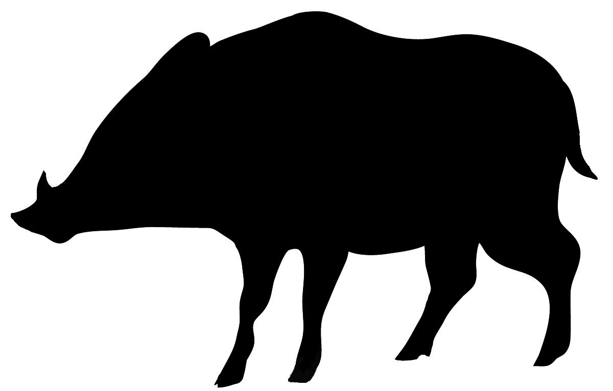 wild boar silhouette in black
