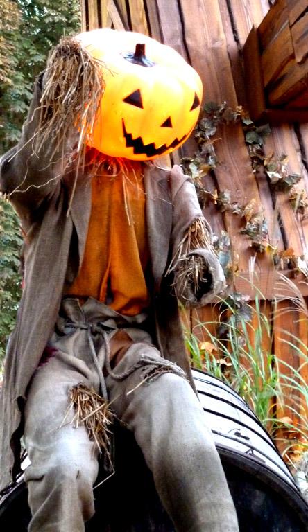 halloween pumpkin man on barrel