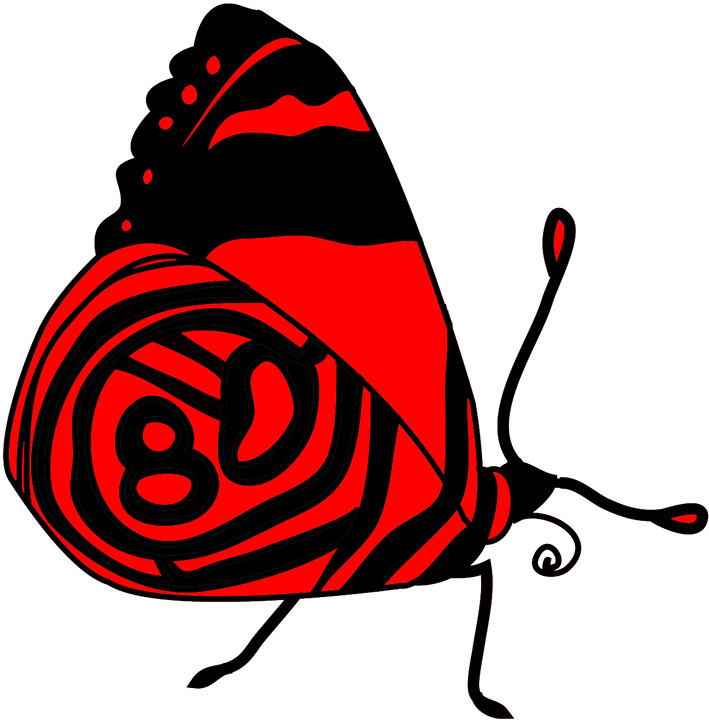 red black butterfly resting