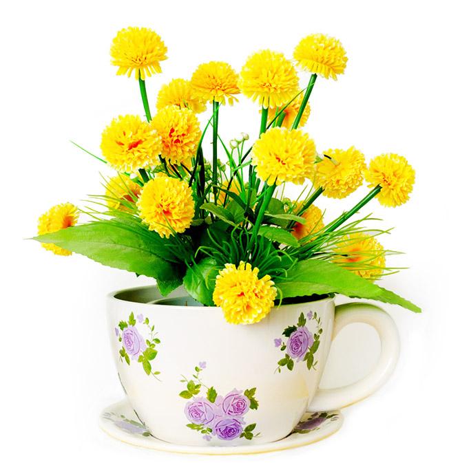 spring flowers in tea cup
