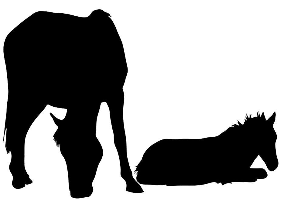 mare with foal silhouette