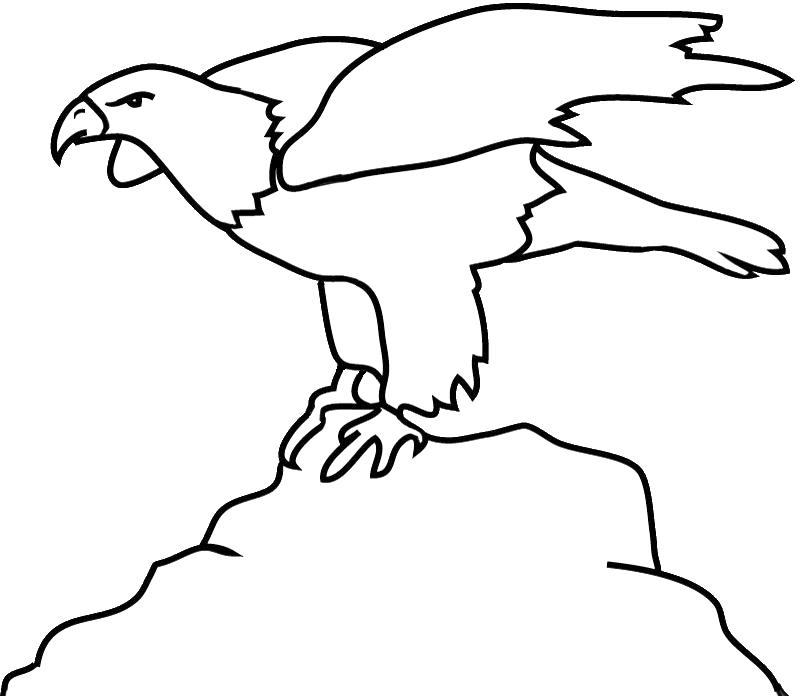 bald eagle outline on rock