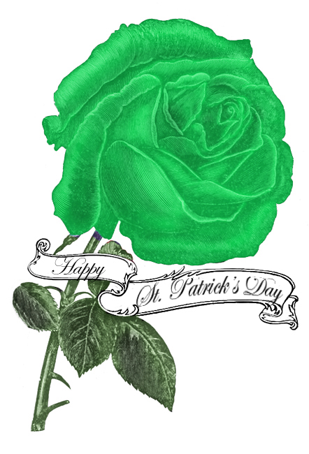 happy st. Patrick's day rose greeting