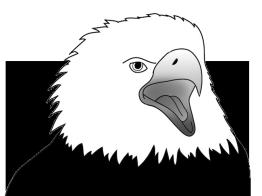 Eagle screaming sketch