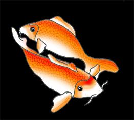 koi fish drawings black oragne white