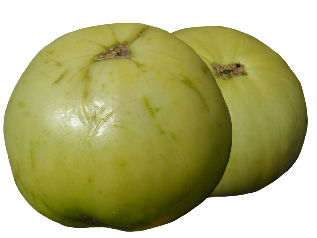 clipart two green tomatoes