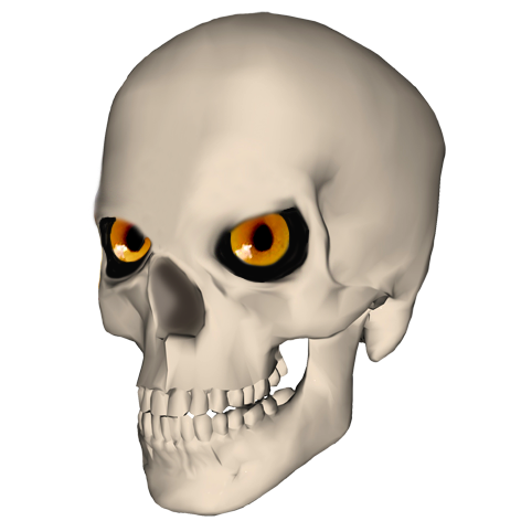 Funny skull picture with eyes