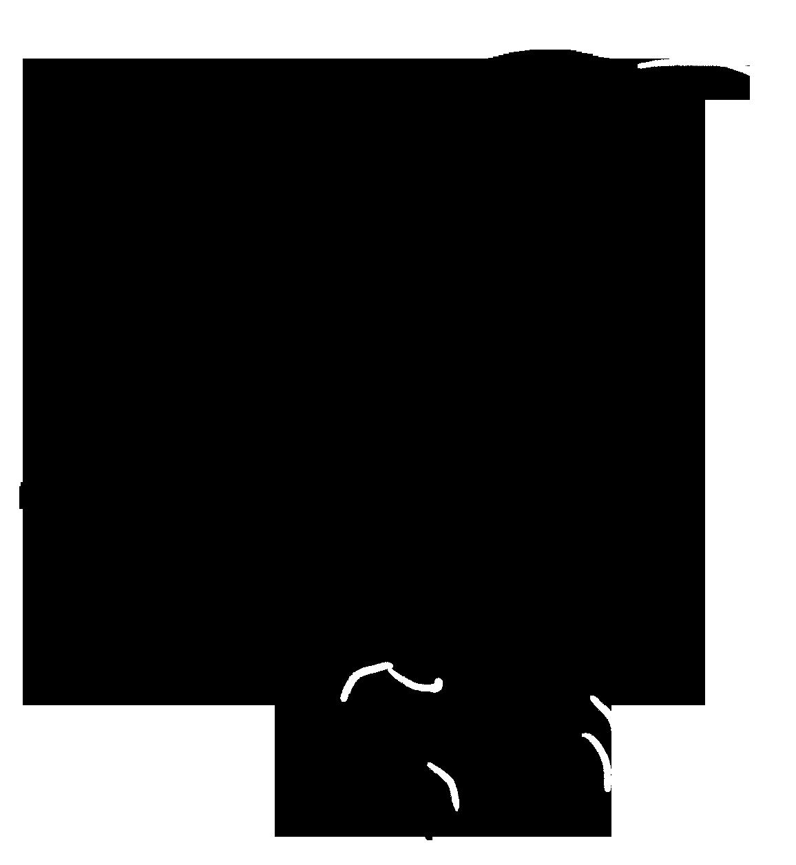 silhouette black of small standing bird