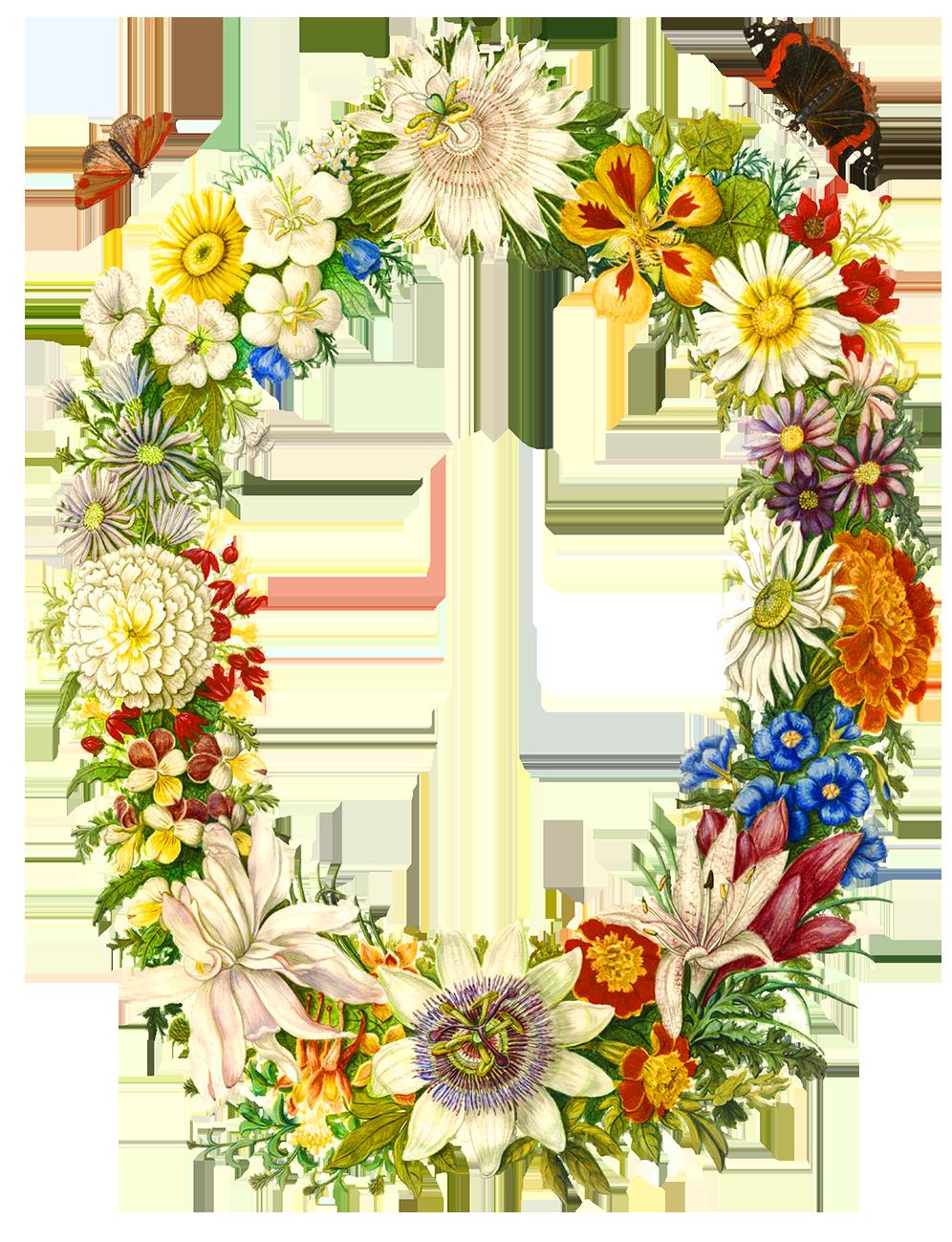vintage oval flower frame