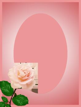 valentine frame soft pink rose
