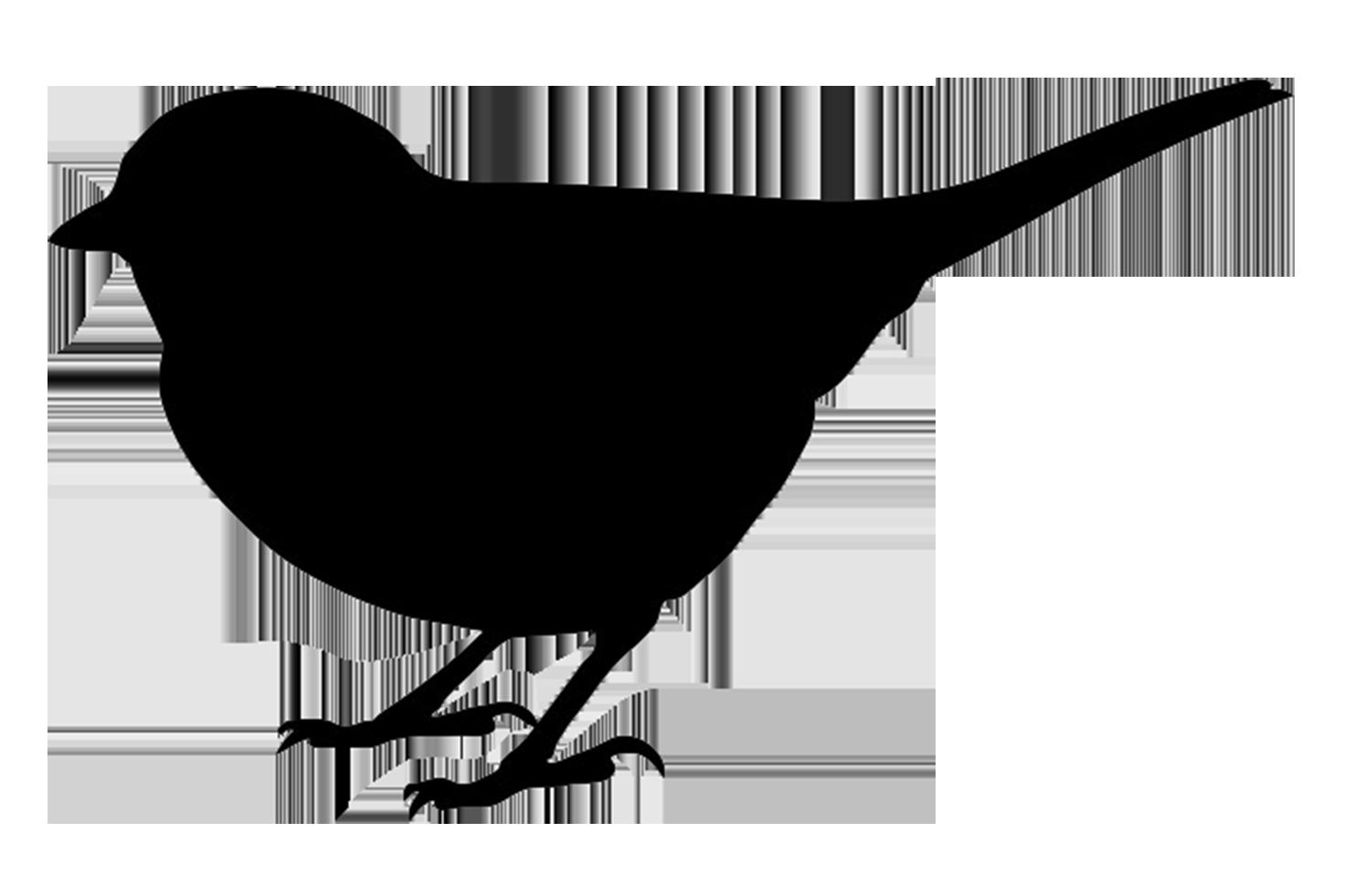 small bird black silhouette