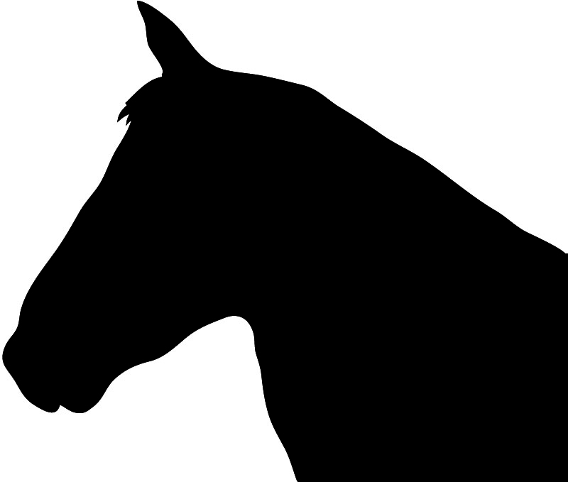 Black silhouette of horse head
