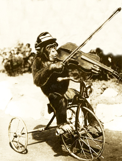 vintage photo of chimp playing the violin