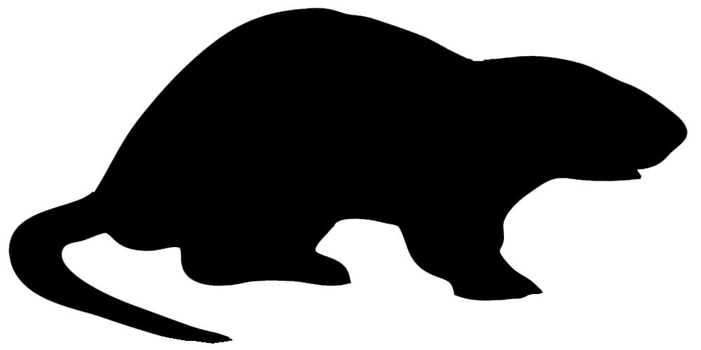 nutria silhouette black
