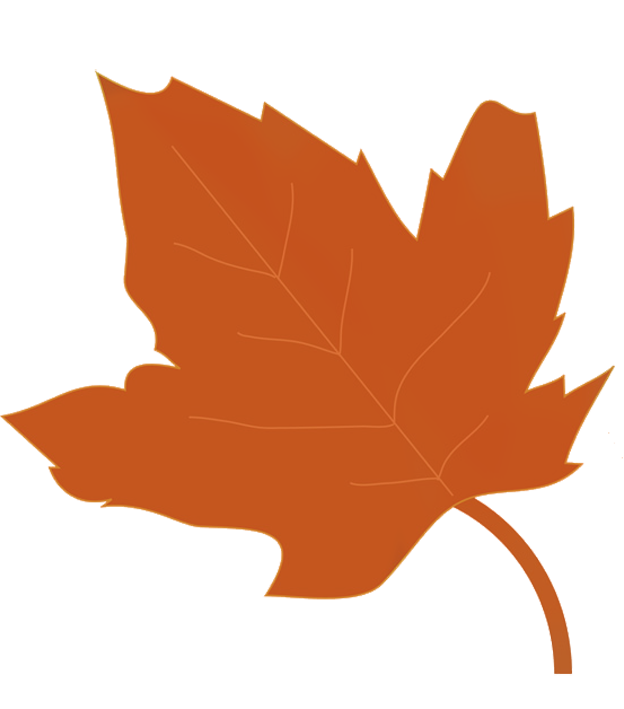drawing of brown fall leaf