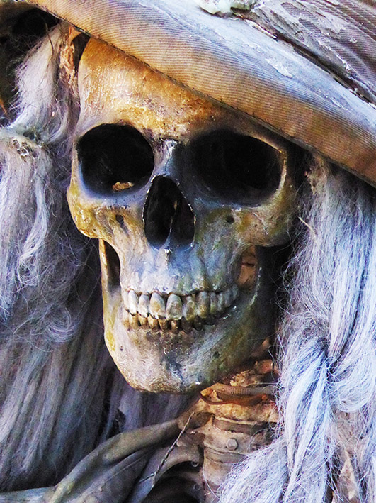 Halloween skeleton with hat