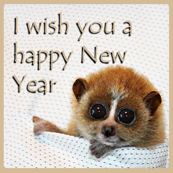 new year greeting from small animal