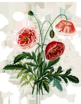 digital scrapbooking flowers
