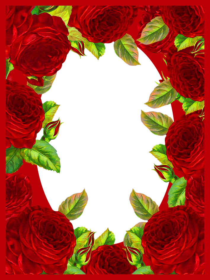 frame with lots of red roses for Valentines day