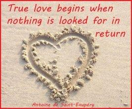 unconditional love quote picture