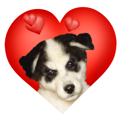 Valentine heart with puppy and hearts