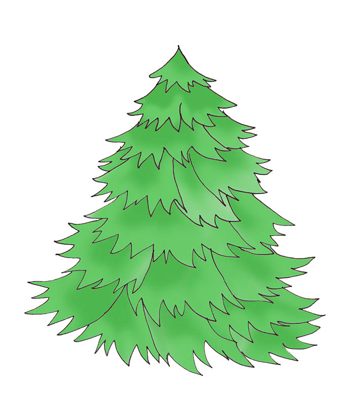 Christmas tree without decorations green