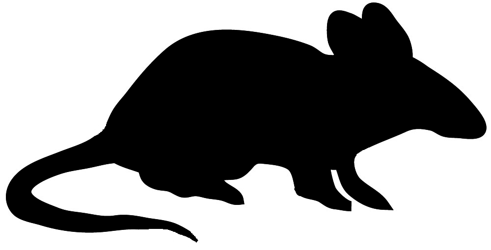 Black silhouette of mouse