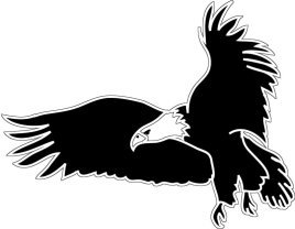silhouette of flying bald eagle