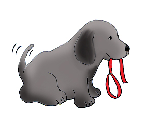 funny dogs with dog leash