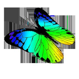 free butterflies drawing