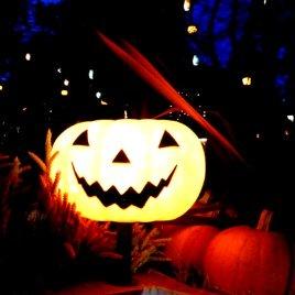 Light in a pumpkin head