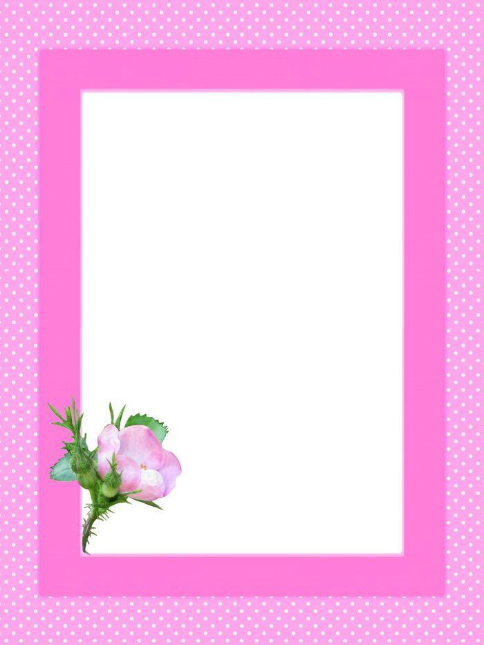 pink flower frame
