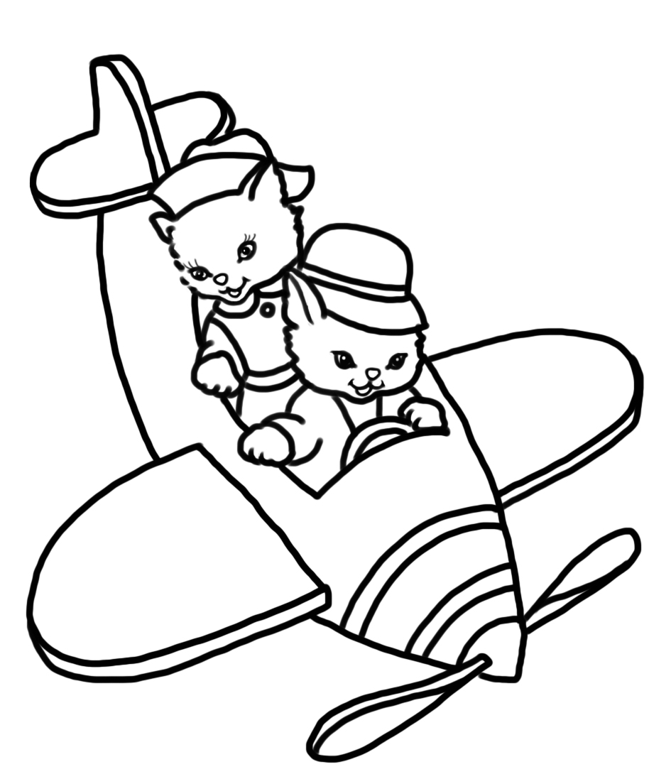 two cats in an aircraft