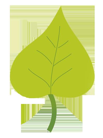 fall leaf green