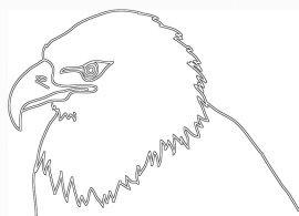 white black silhouette of eagle head
