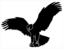 silhouette of landing eagle