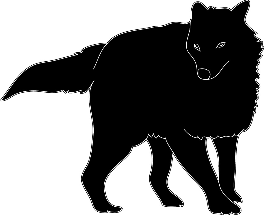 silhouette of wolf with winter fur black white