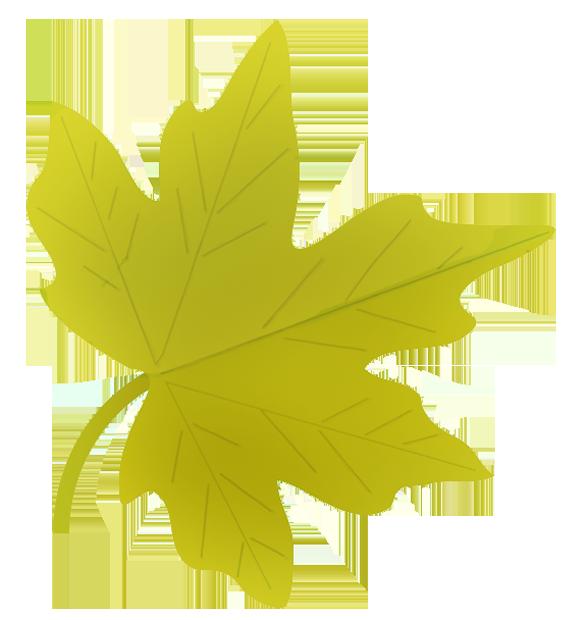 green fall leaf drawing