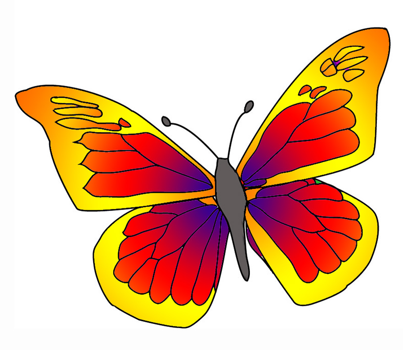 red orange yellow butterfly graphic