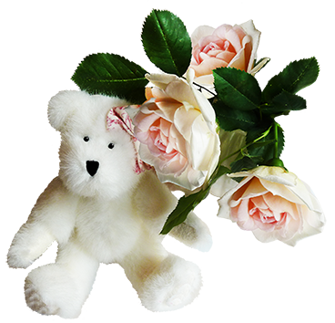 White teddy bear with rose