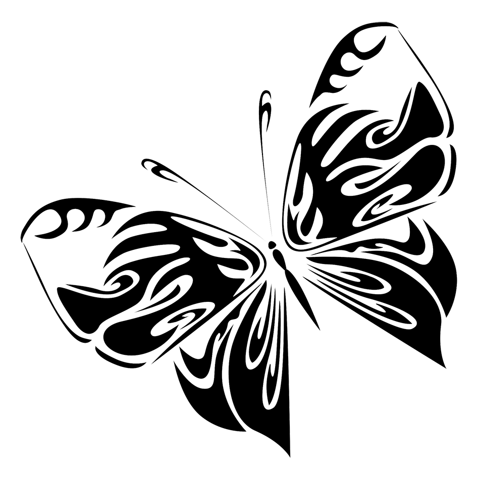 black butterfly drawing png