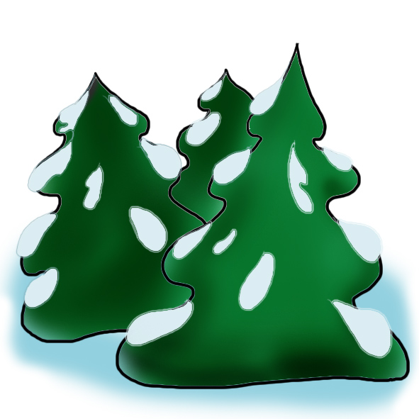 spruces with snow