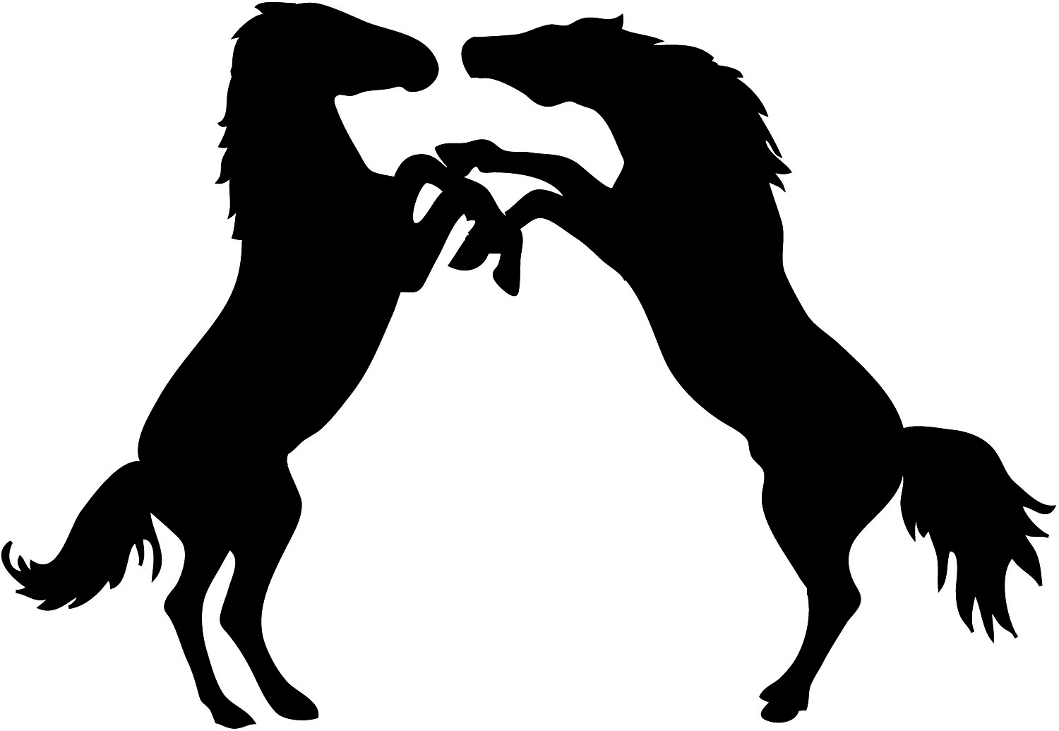 two stallions fighting silhouette