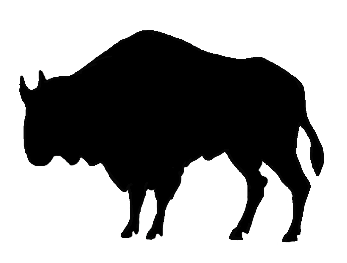 silhouette of buffalo black