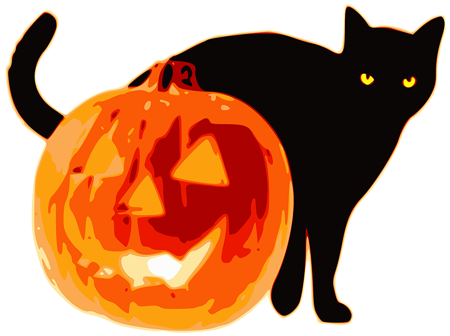 Halloween black cat and pumpkin